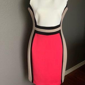 NWT Calvin Klein dress sz 10